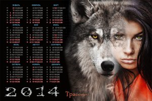 Календарь на 2014 год - Одинокая волчица