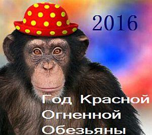 какой год 2016 какого животного