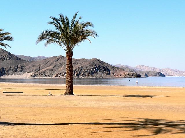 Отдых, который дарит нам Египет