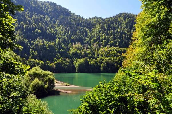 Чем примечательно озеро Рица в Абхазии?
