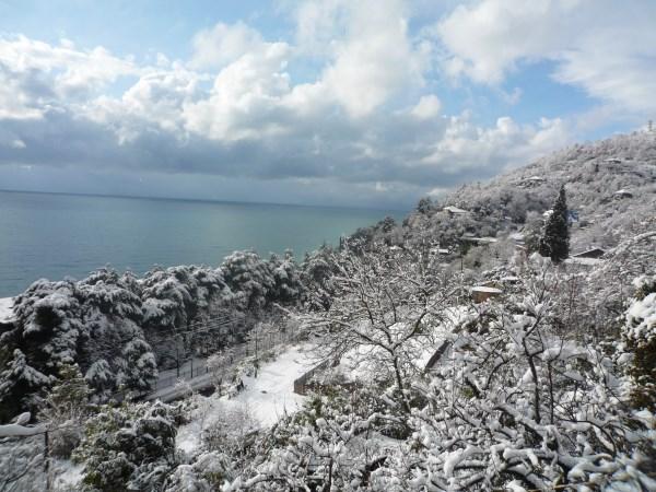 Какая погода будет в Абхазии в декабре