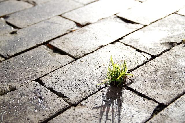 Преимущества тротуарной плитки